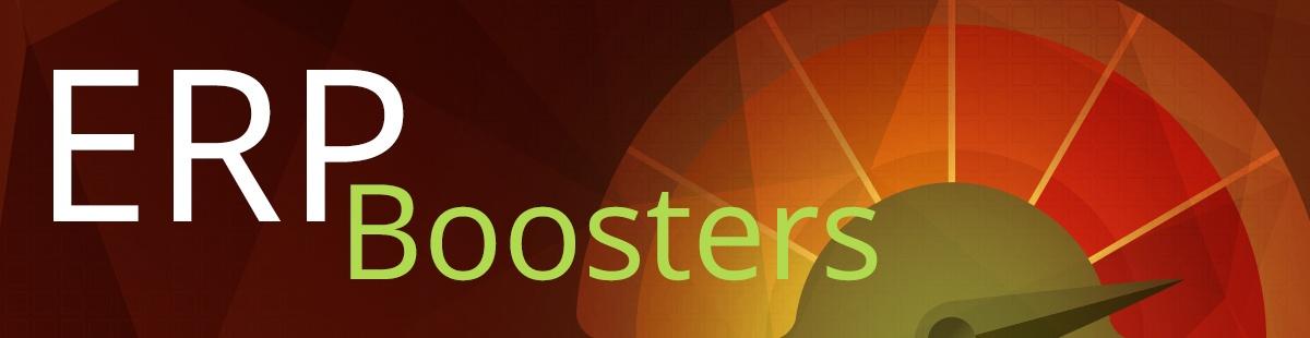 ERPbooster_Header.jpg